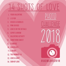 14 Shots of LOVE Photo Challenge